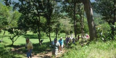 Tehuacalco Archaeological Zone Tour from Acapulco $75.00 to $85.00 USD